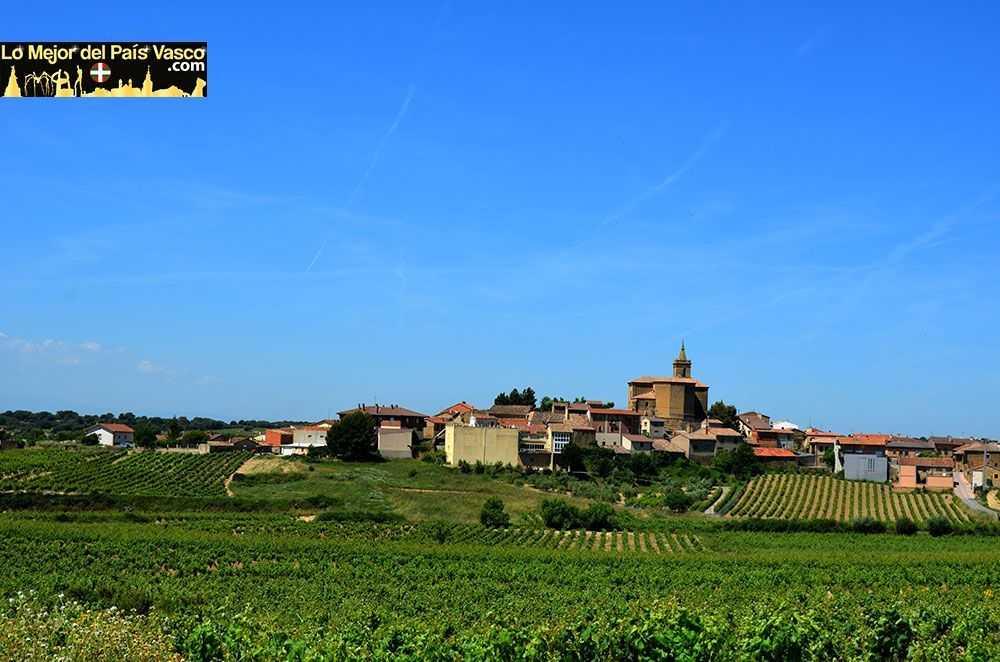 Navaridas-Rioja-Alavesa-por-Lo-Mejor-del-País-Vasco