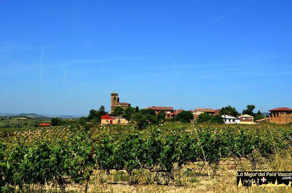 Páganos-Rioja-Alavesa-por-Lo-Mejor-del-País-Vasco